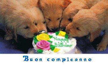 Auguri Di Buon Compleanno Con Animali Carla Vong Blog